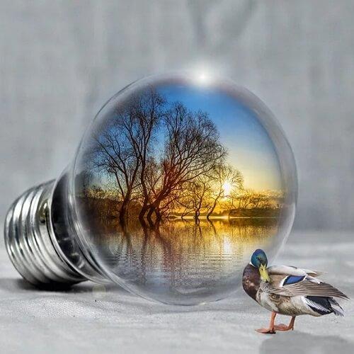 Investment in erneuerbare Energien