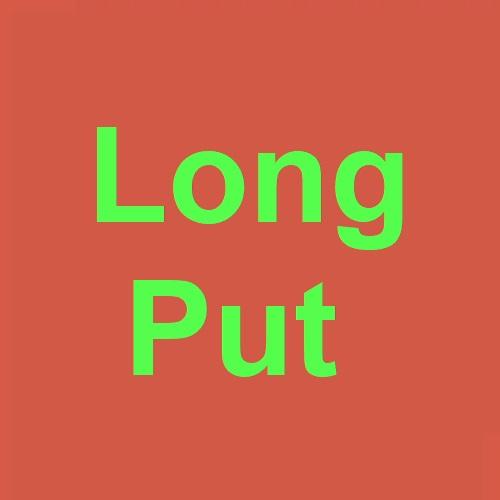 Long Put
