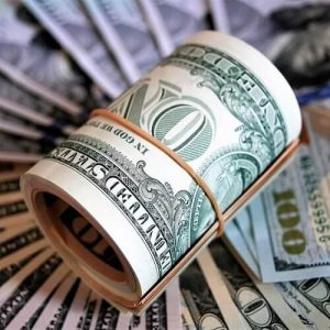 Liquiditätsgrundsatz